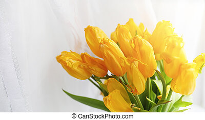 A bouquet of red tulips in a vase on the windowsill. A gift for