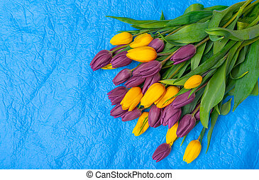 A bouquet of tulips on a blue background.