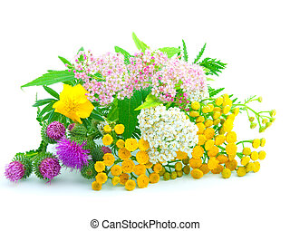 a bouquet of wildflowers