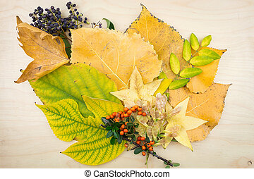 A bouquet of yellow, green autumn leaves, berries and seeds.