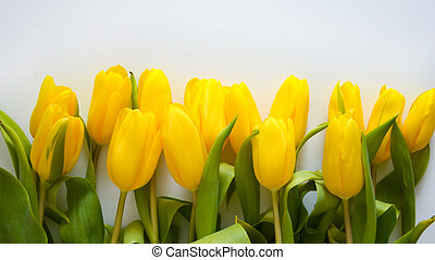 A bright bouquet of yellow tulips. beautiful spring flowers. background for decoration for the Easter holida