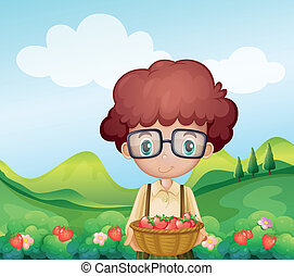 A boy harvesting strawberries - Illustration of a boy...
