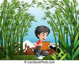 A boy holding a frame at the rainforest