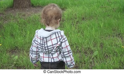 A boy in the thick grass in the park is played