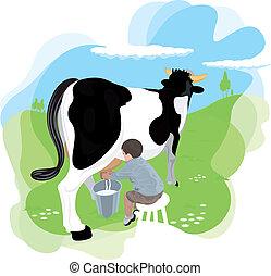 A boy milking a cow in the meadows of the farm school. It is...
