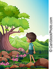 A boy near the giant tree in the forest