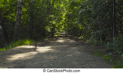 A boy running through alley in the park at summer day