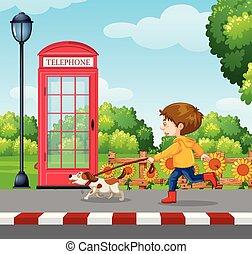 A Boy Walking a Dog