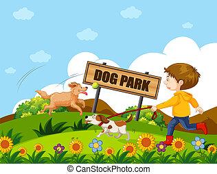 A boy walking dog
