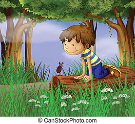 A boy watching an insect - Illustration of a boy watching an...