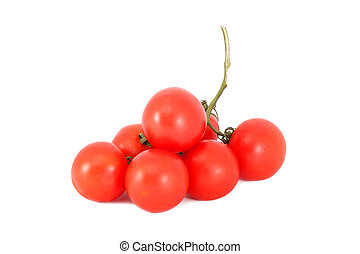 A branch of red tomatoes