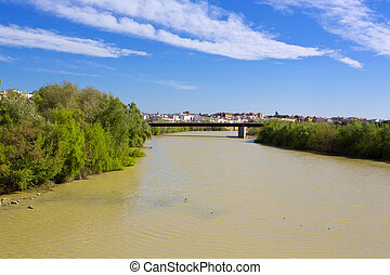 A bridge on Guadalquivir river, in Cordoba, Spain