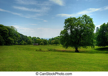A warm day in the summer, Swansea's Singleton Park