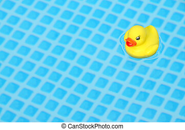 A bright yellow toy duck in a swimming pool