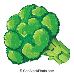 A broccoli - Illustration of a broccoli on a white...