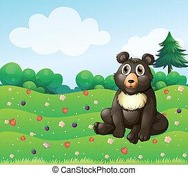 A brown bear sitting in the garden
