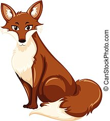 A brown fox on white background