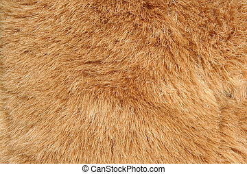 A Brown fur background texture
