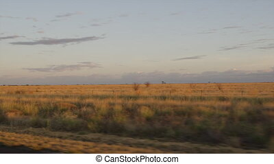 A brownish grassy plain shot - A wide shot of the grassy...
