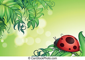 A bug above the green leaves