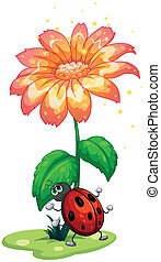A bug under the giant flower