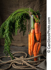 A bunch of fresh carrots in glass vase