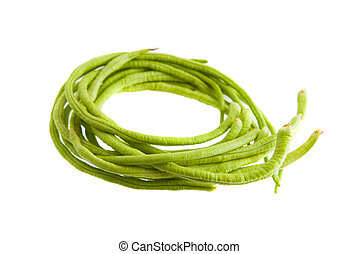 A bunch of freshly picked long beans isolated on white