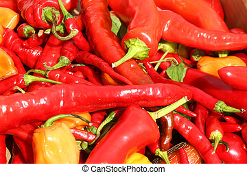 bunch of hot chili peppers background
