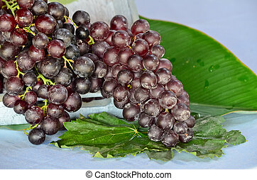 A bunch of purple grapes with leaves