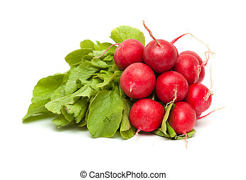 a bunch of radish isolated on white background