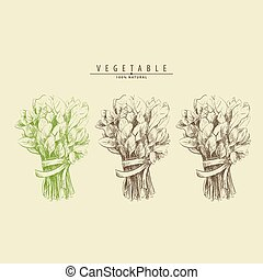 bunch of spinach - a bunch of spinach illustration
