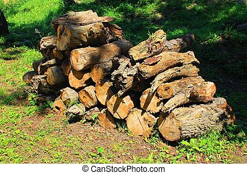 A bundle of firewood - A photo depicting a bundle of...