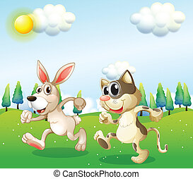 A bunny and a cat running