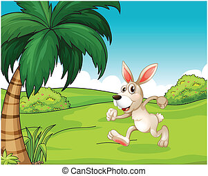 A bunny running at the hilltop