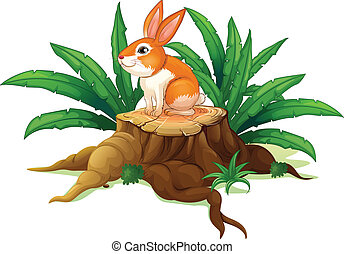 A bunny sitting on a stump with green leaves
