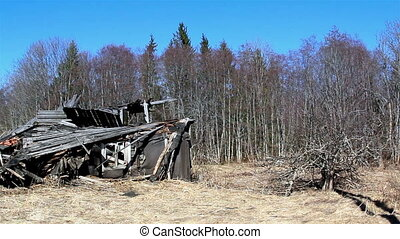 A burned wooden house on the forest
