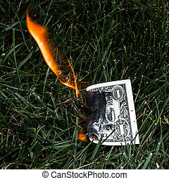 A burning dollar bill in the grass.