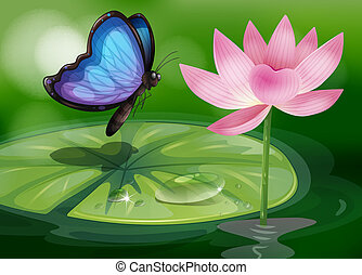 A butterfly near the pink flower at the pond