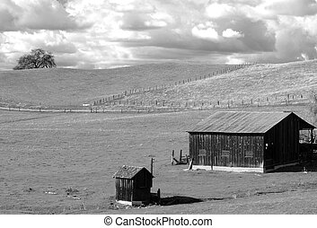 B&W view of a lone barn and shed on a California hillside