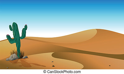 A cactus in the desert