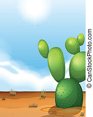 A cactus plant in the desert