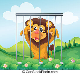 A cage with a wild lion