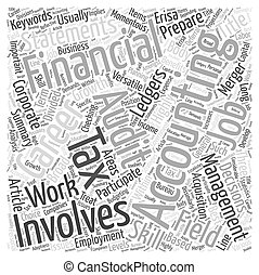 A Career In Accounting Word Cloud Concept