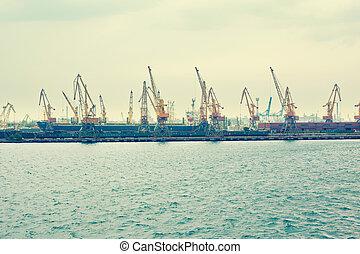 A cargo cranes in the sea port