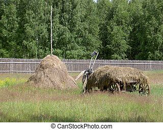 A cart of hay and stack hay