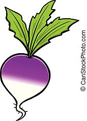 Turnip - A cartoon illustration of a Turnip.
