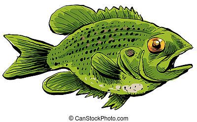 Rock Bass - A cartoon of a Rock Bass fish.