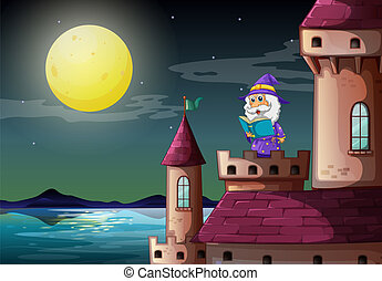 A castle port with a wizard reading a book