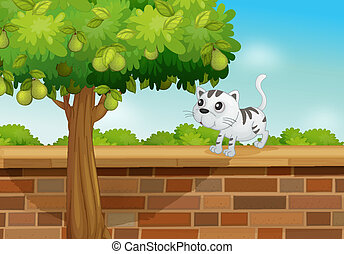 A cat on a wall