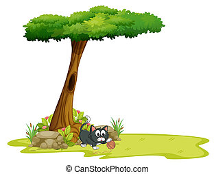 A cat playing under a tree with hollow